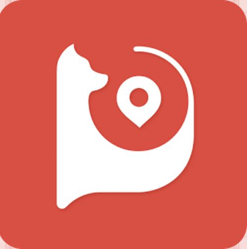 logo_app_ddpai